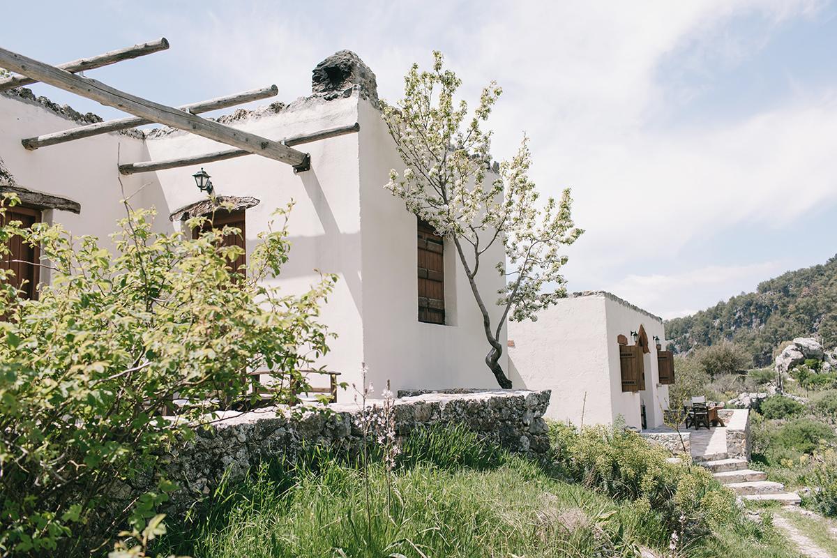 alonia agios ioannis crete